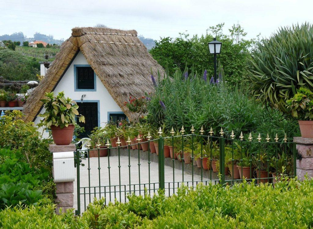 Un jardin sans argent – Le site de jardinage pour les petits budgets